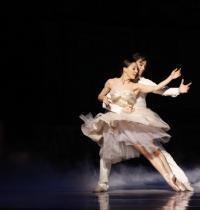 澳大利亚国家芭蕾舞团倾团来沪 睽违10年演绎别样《灰姑娘》
